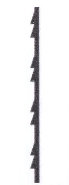 Laubsägeblatt Taifun50
