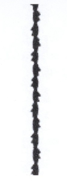 Laubsägeblatt Tornado